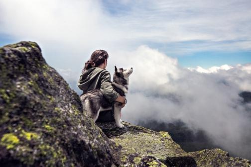 Prendersi cura di un Pet migliora la salute?