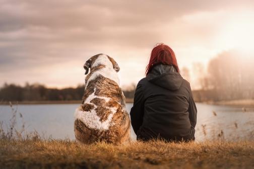 3 notizie importanti da fornire al veterinario durante la visita